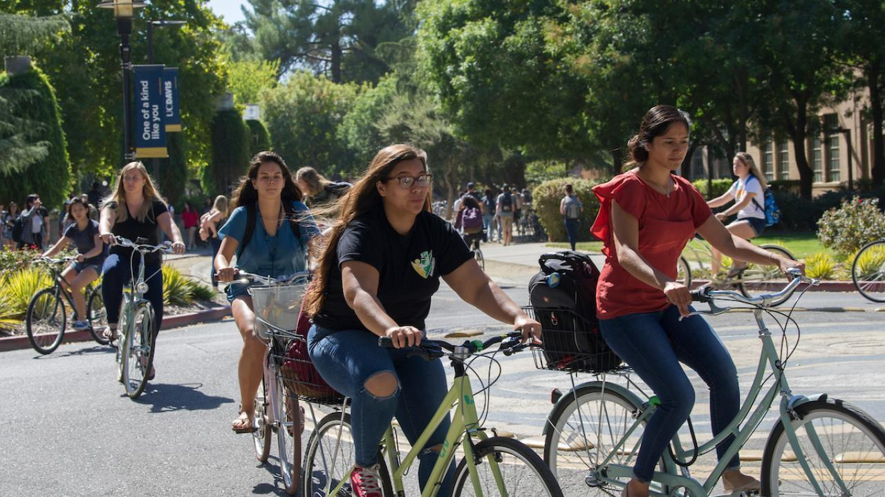 Students on campus riding their bicycles